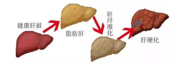 贵州盛京中医肝病医院专不专业