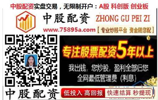 上海十大配资平台app